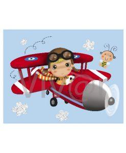 Cuadro Aviador