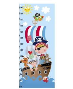 Cuadro Decorativo Medidor Pirata